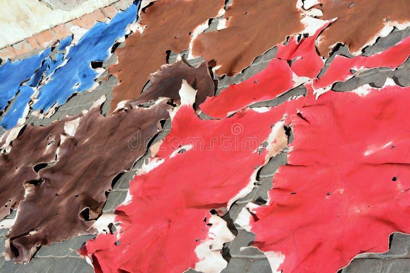 Peaux d'animal colorées crues pour sécher au soleil images libres de droits