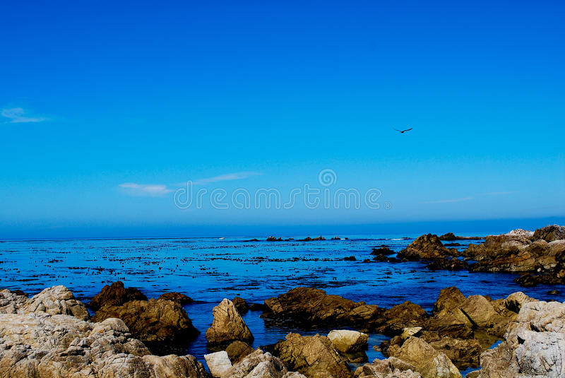 Pebble Beach. The aptly named Pebble Beach in Northern California. Somewhere between the 7th and 8th holes of the world famous golf course royalty free stock image