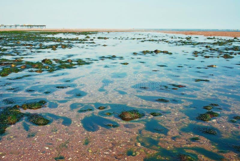 Pebble Beach fotografie stock