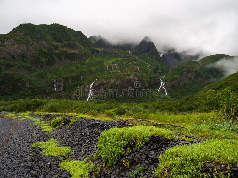 Pebble Beach e montanhas luxúrias, parque nacional dos fiordes de Kenai foto de stock royalty free