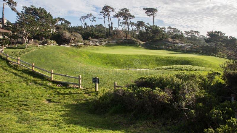 Pebble Beach golfbana, Kalifornien royaltyfri bild