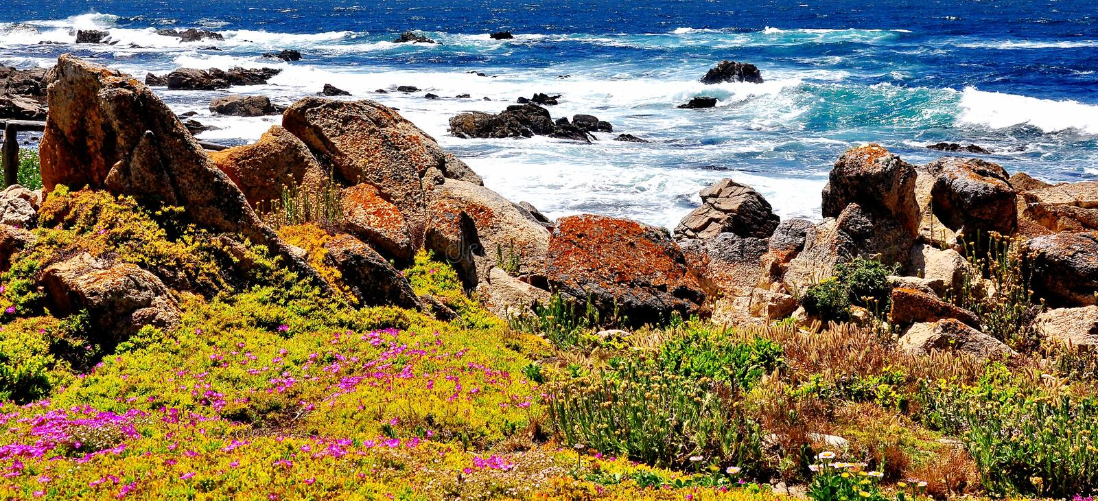 Pebble Beach Lookout in California stock photography