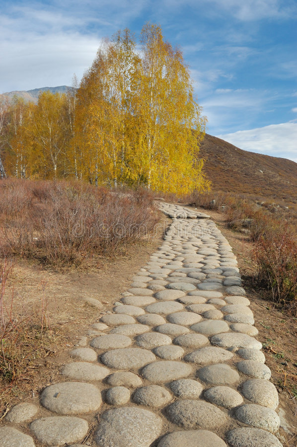 Download Pebble Pavement Royalty Free Stock Photos - Image: 3655848