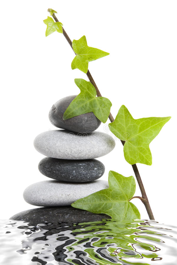 Pebble Stack and Ivy stock photo