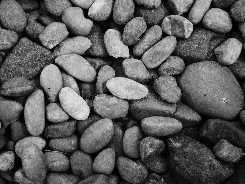 Pebble stone background, aroma stone in nature garden. Pebble stone pattern.pebbles beach stone outdoor garden , rock sand nature background royalty free stock images
