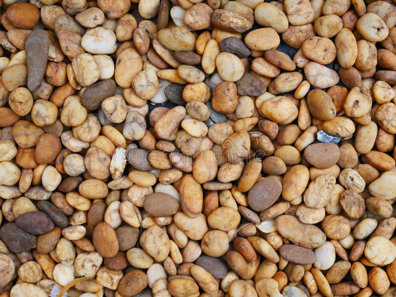Pebble stone background, aroma stone in nature garden. Pebble stone pattern.pebbles beach stone outdoor garden , rock sand nature background stock images