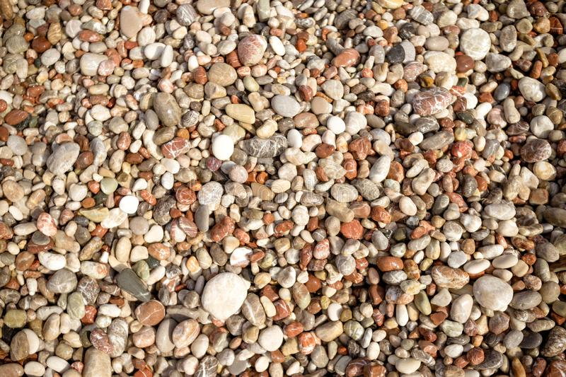 Pebble stone background.Small colorful pebbles background, simplicity, daylight, stones.smooth waterworn pebble use for royalty free stock photo