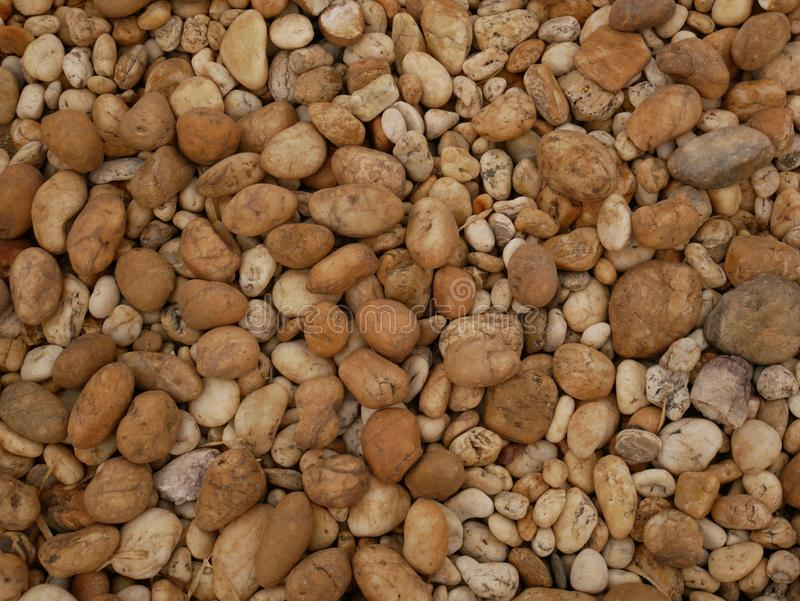 Pebble stone background, aroma stone in nature garden. Pebble stone pattern.pebbles beach stone outdoor garden , rock sand nature background stock image