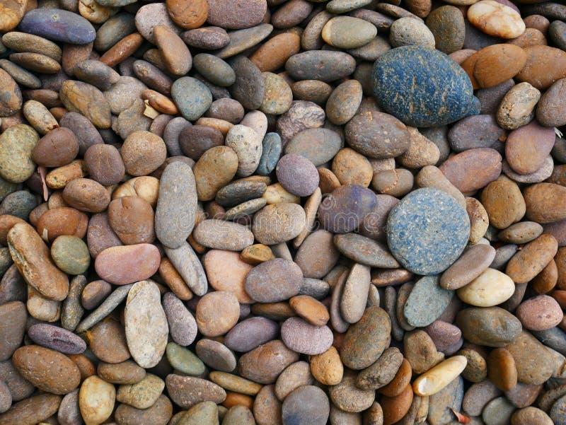Pebble stone background, aroma stone in nature garden. Pebble stone pattern.pebbles beach stone outdoor garden , rock sand nature background stock photo