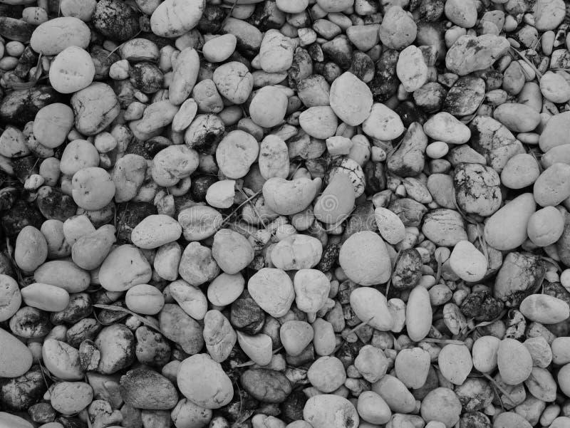 Pebble stone background, aroma stone in nature garden. Pebble stone pattern.pebbles beach stone outdoor garden , rock sand nature background stock image