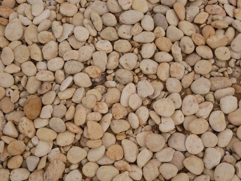 Pebble stone background, aroma stone in nature garden. Pebble stone pattern.pebbles beach stone outdoor garden , rock sand nature background stock photography