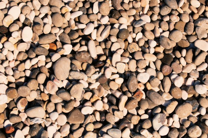 Pebble stones on a beach brown stock images