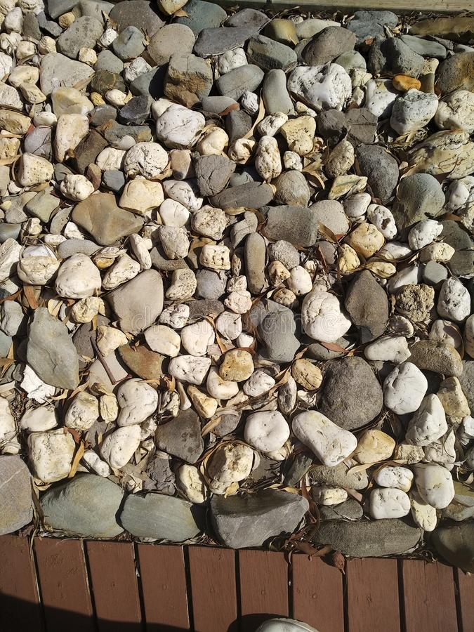 pebbles arkivbilder