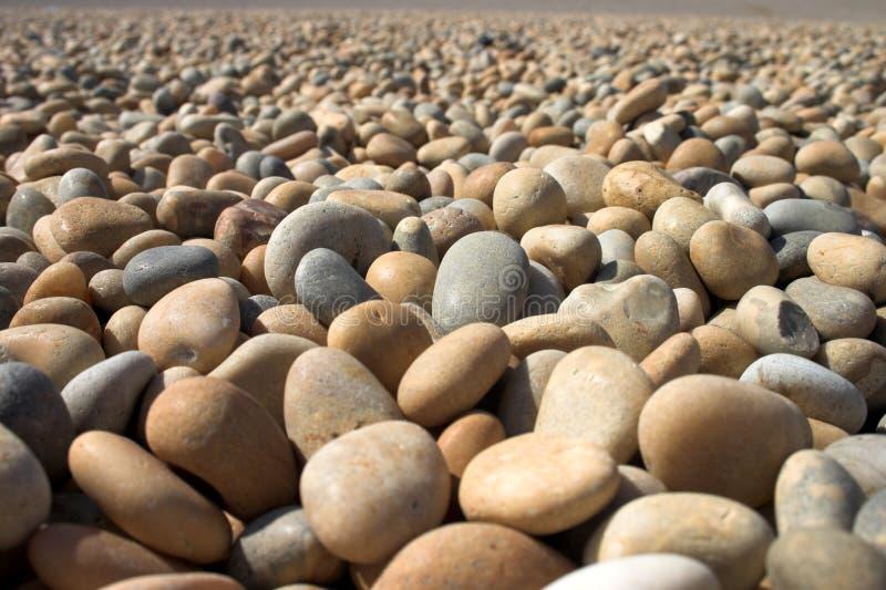 pebbles royaltyfri foto