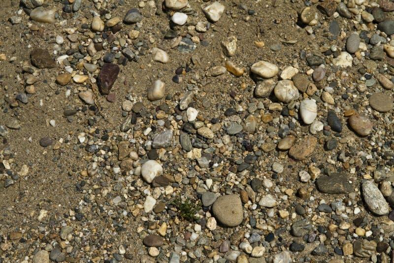 Download Pebbles stock photo. Image of blue, beach, pebble, assortment - 20873322