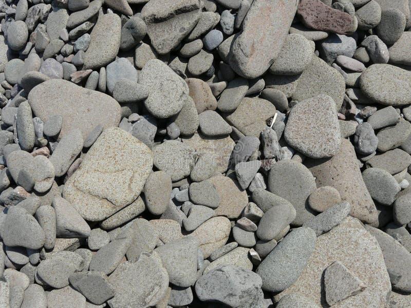 pebbles royaltyfri fotografi