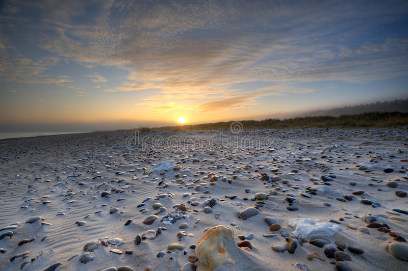 Download Pebbles on a Beach stock photo. Image of distinct, natural - 22088412