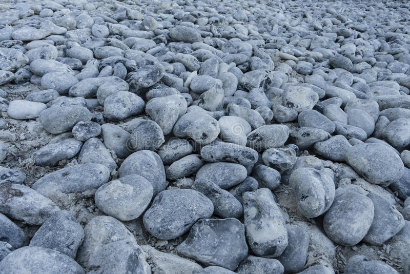Download Pebbles on the beach stock image. Image of rock, pebble - 26179603