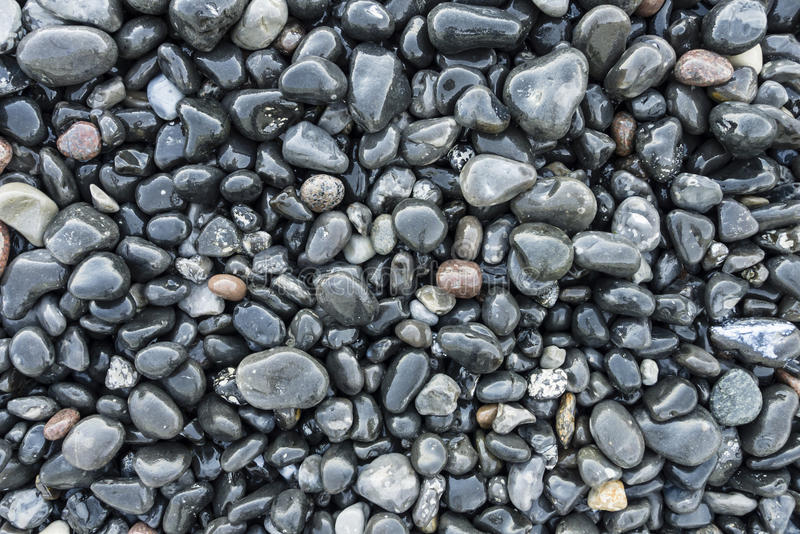 Download Pebbles On The Beach Stock Photos - Image: 26179623