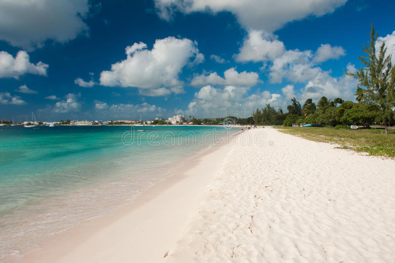 Explore The Beauty Of Caribbean: Pebbles Beach Stock Photo. Image Of Barbados, Paradise