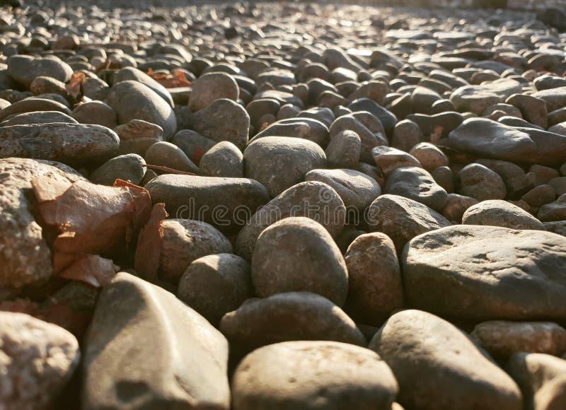 Pebbles royalty free stock photo