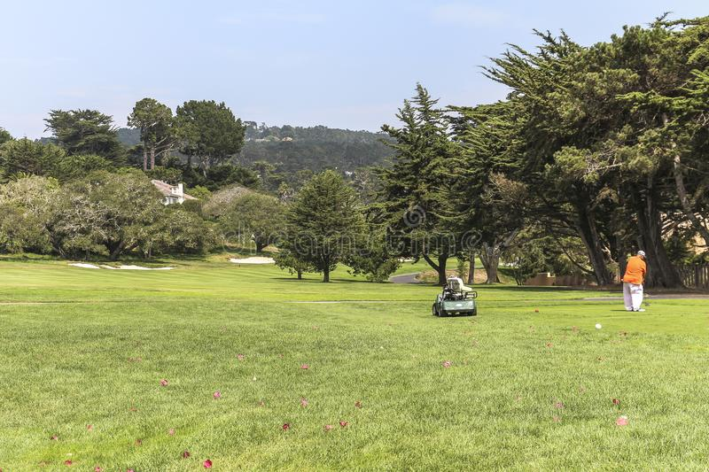 At the pebbles golf course in california royalty free stock photo