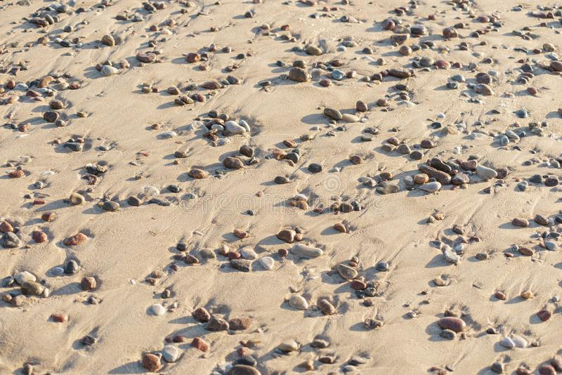 Pebbles in sand. Pebbles on sand beach natural background by summer evening stock photo