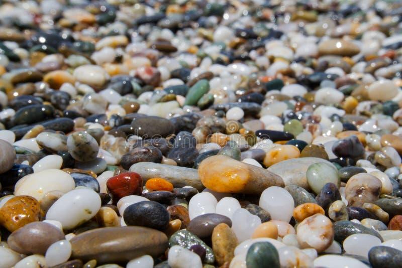 Pebbles on a shingle beach. Colorful small rounded wet pebbles on a shingle beach stock photography