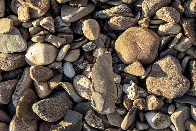 Pebbles on the shore stock photography