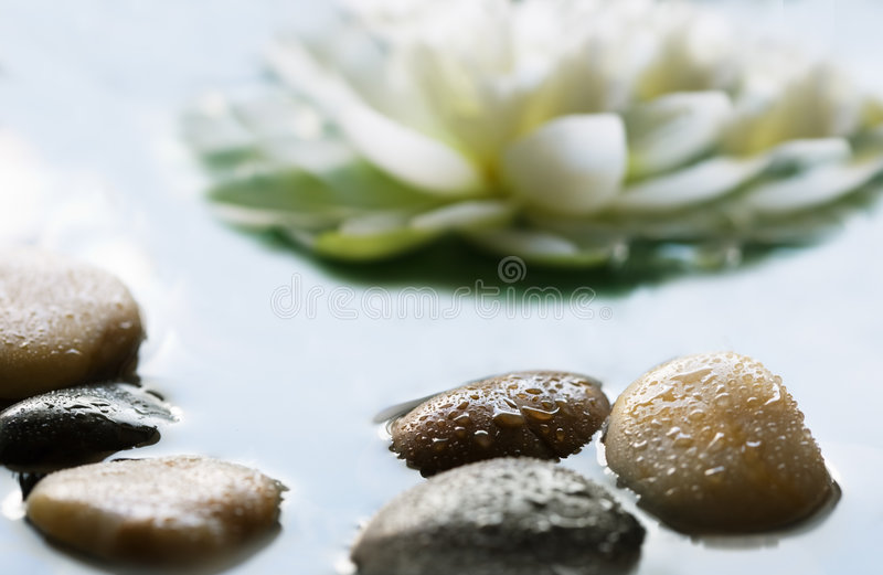 Download Pebbles in the water stock image. Image of rock, pebble - 8128051