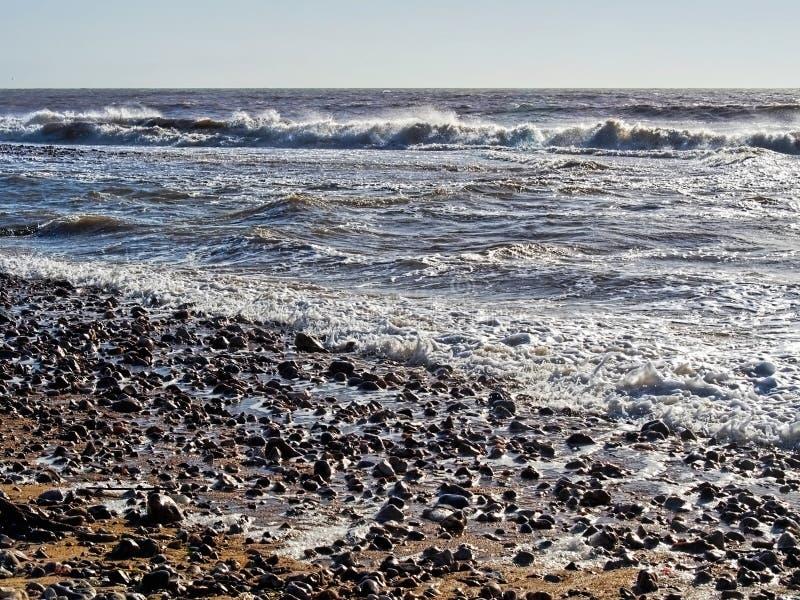 Pebbly strand på Charmouth, Dorset arkivbild