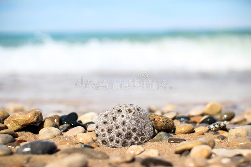 Pebolhas cinzentas e castanhas próximas do mar fotos de stock royalty free