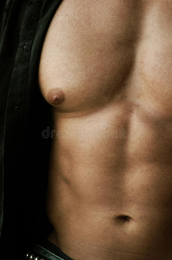 Pec And Abs Royalty Free Stock Photo