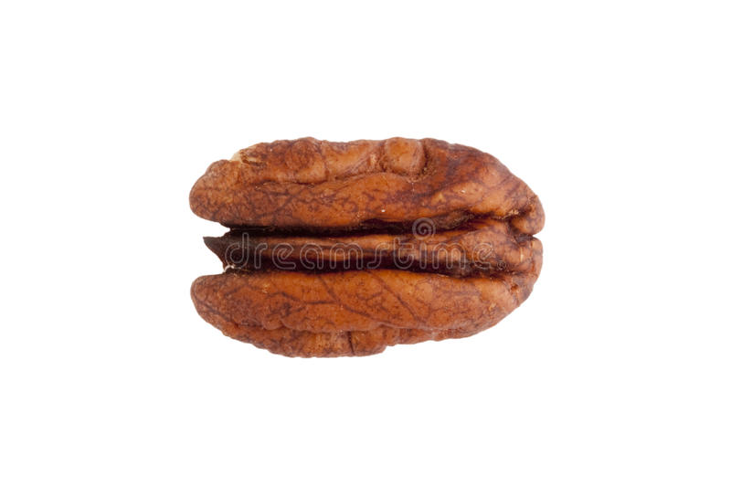 Pecan. Brown pecan isolated on a white background royalty free stock photo