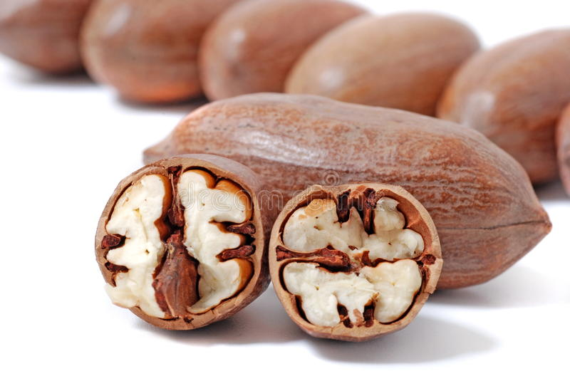 Download Pecan nut stock photo. Image of protein, fruit, objects - 10867916