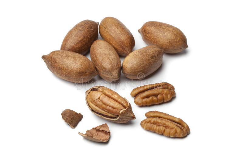 Pecan nuts. On white background royalty free stock photography