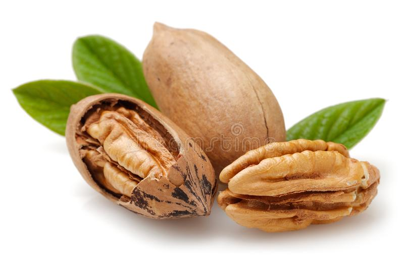 Pecan nuts and leaves isolated on white. Background stock photography