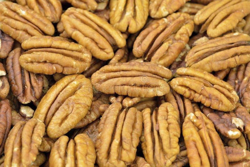 Pecan nuts. Pecan nut halves in closeup royalty free stock image