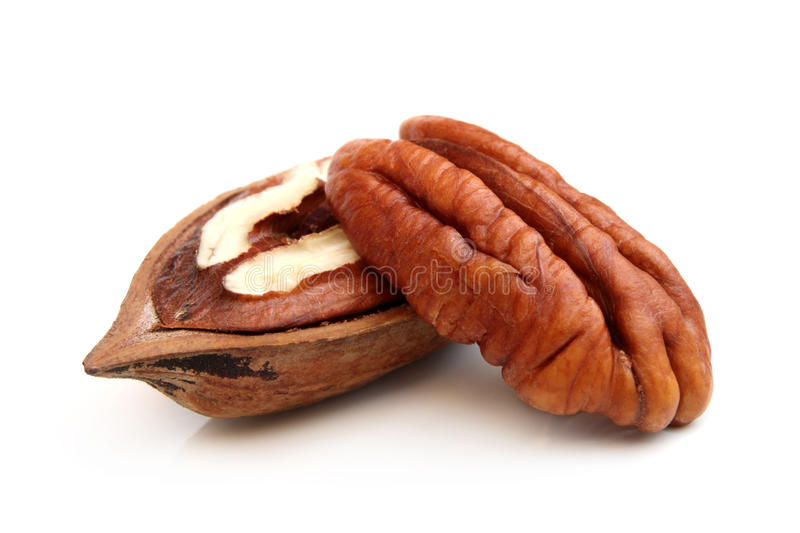 Download Pecan nuts stock image. Image of isolated, object, opened - 29868223