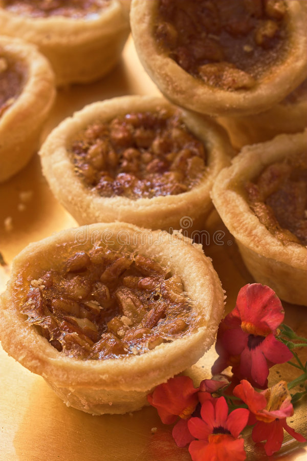 Pecan Tartelettes royalty free stock images