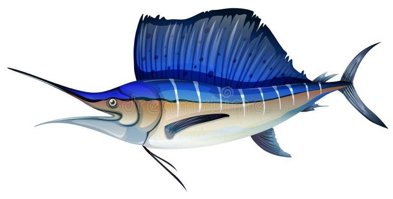 Peces espadas con la aleta azul ilustración del vector