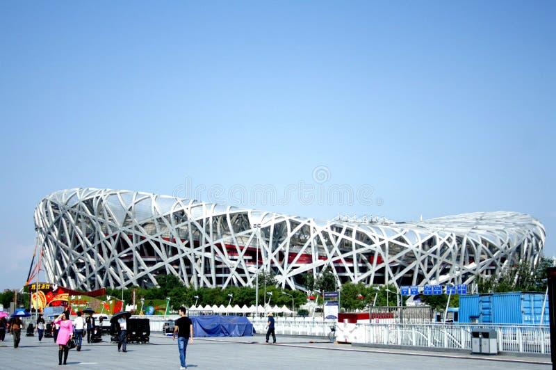 Pechino nido nazionale uccello/dello Stadio Olimpico s fotografia stock