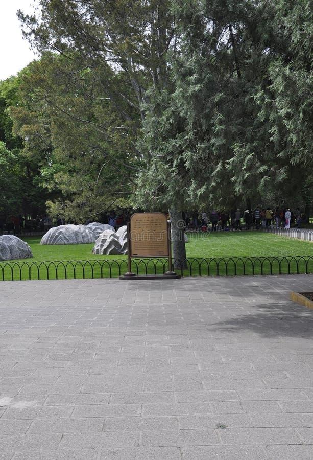 Pechino, settima può: Un prato inglese di cinque pietre dal parco famoso del tempio del cielo a Pechino fotografia stock libera da diritti