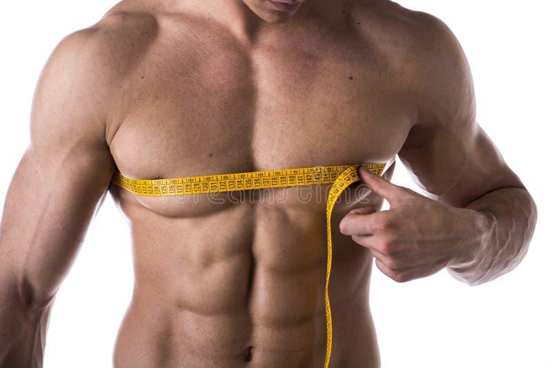 Pecho de medición descamisado muscular y Pecs del hombre joven con cinta métrica imagenes de archivo