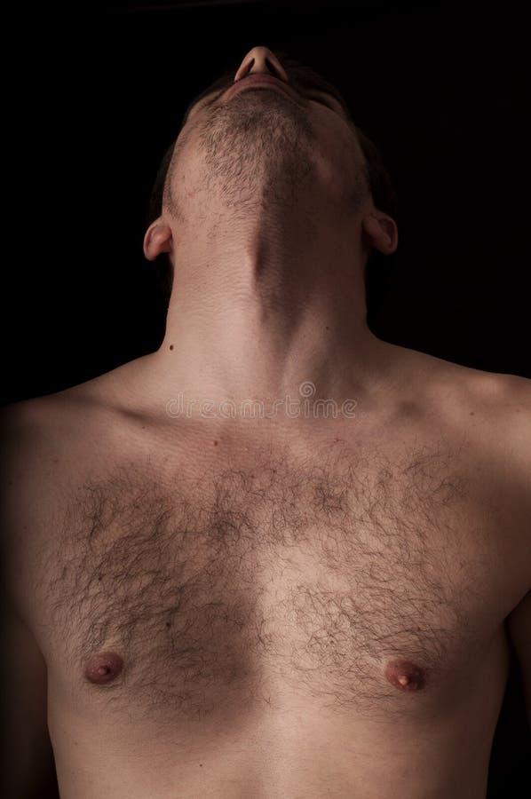 Pecho y cuello foto de archivo. Imagen de anatomía, carrocería ...