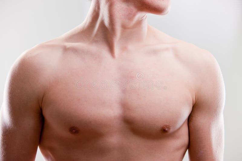 Pecho y cuello de un hombre fuerte joven imagen de archivo