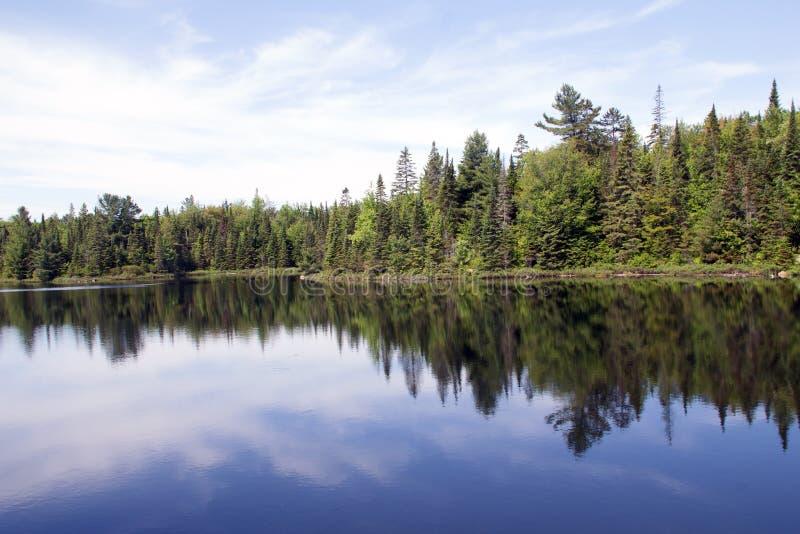 Peck湖,阿尔冈金省立公园4 免版税库存照片