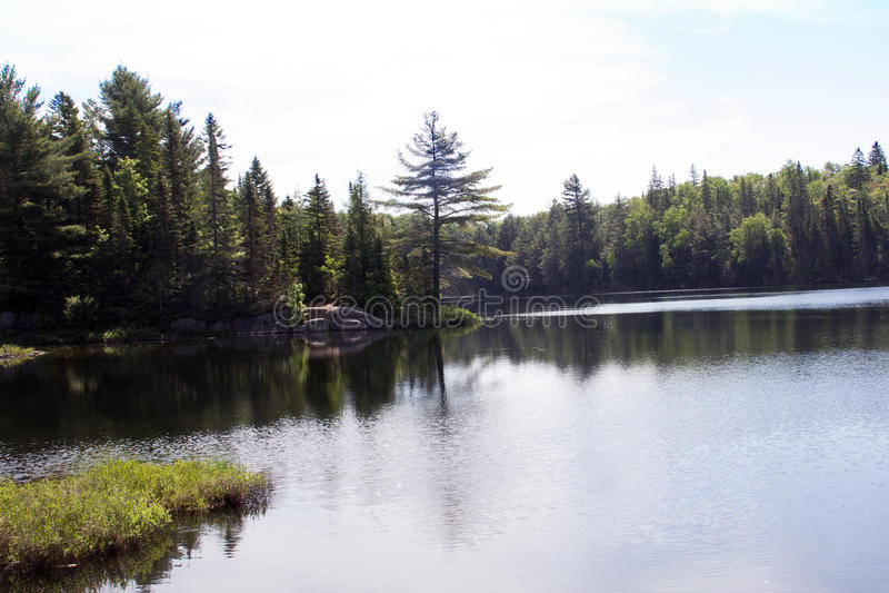 Peck Lake, parque provincial 2 do Algonquin fotografia de stock royalty free