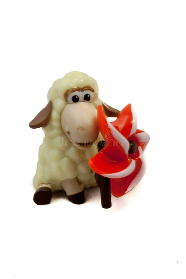 Pecore bianchiccie su fondo bianco fotografie stock libere da diritti