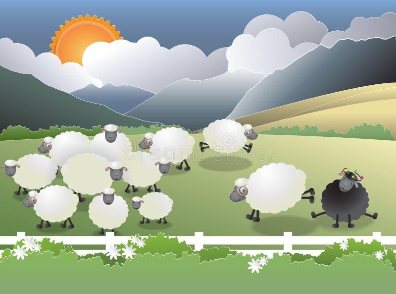 Pecore nere nel campo illustrazione vettoriale